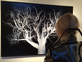 danica-amsterdam-tree-jpg